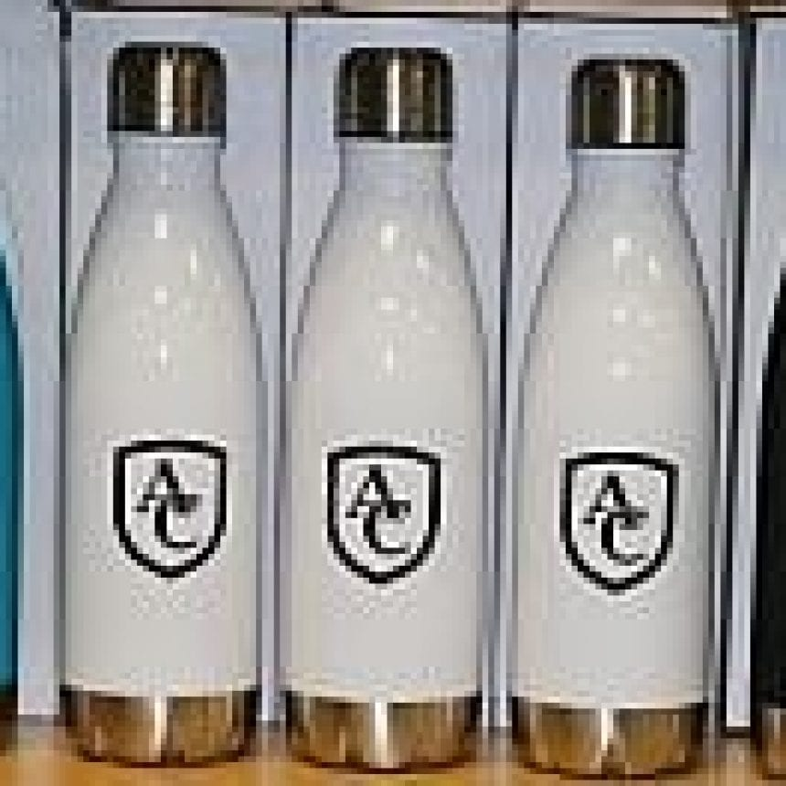 Adele Swell-look Stainless Bottle